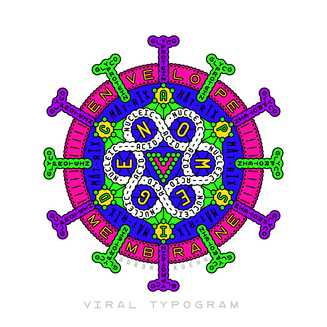 A diagram and model of a virus particle (virion) in cross section, constructed using styled typography.